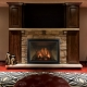 Carlton 46 fireplace