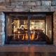 Masonry fireplace doors